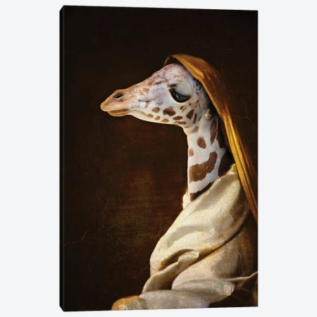 Portrait Of A Young Giraffe Canvas Print #KBU105} by Karen Burke Canvas Print