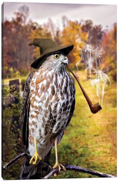 Wizard Hawk Canvas Art Print