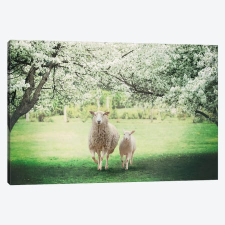 Mommy And Me Cherry Blossom Canvas Print #KBU48} by Karen Burke Canvas Wall Art