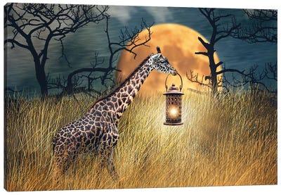 Moonlit Stroll Canvas Art Print
