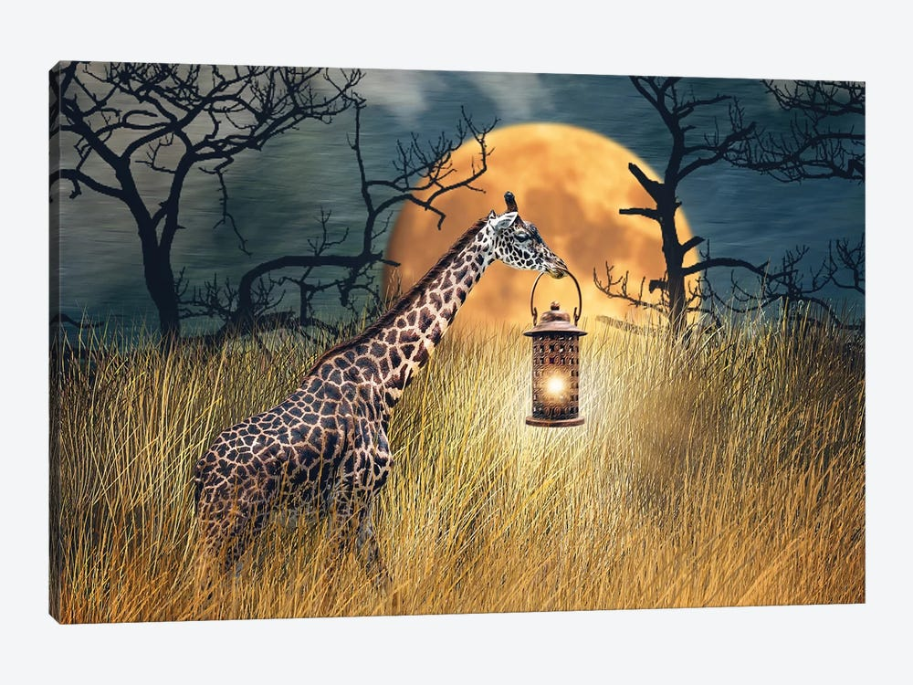 Moonlit Stroll by Karen Burke 1-piece Canvas Artwork