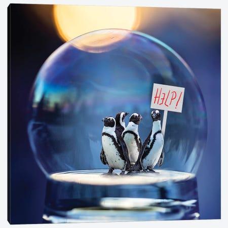 Penguins Help Canvas Print #KBU55} by Karen Burke Canvas Artwork