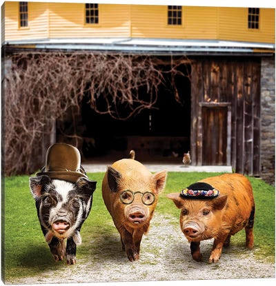 Pig Gang Canvas Art Print