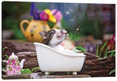 Piglet Bubble Bath Canvas Art Print