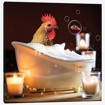 Rooster Bubble Bath Canvas Print #KBU64} by Karen Burke Art Print
