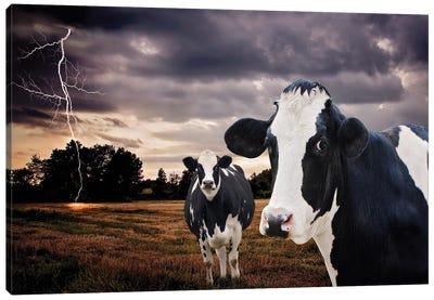 Till The Cows Come Home Canvas Art Print