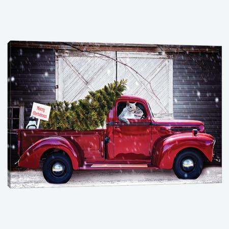 Christmas Tree In Red Ford Truck Canvas Print #KBU83} by Karen Burke Canvas Art