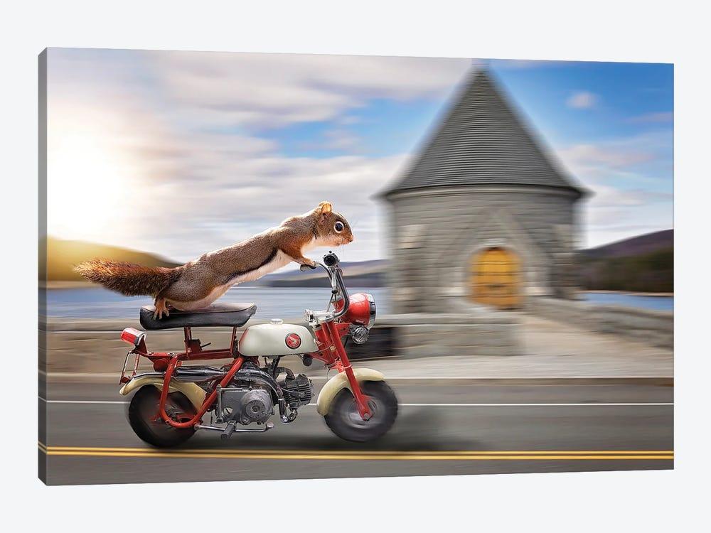 Red Rider Honda Scooter by Karen Burke 1-piece Canvas Art