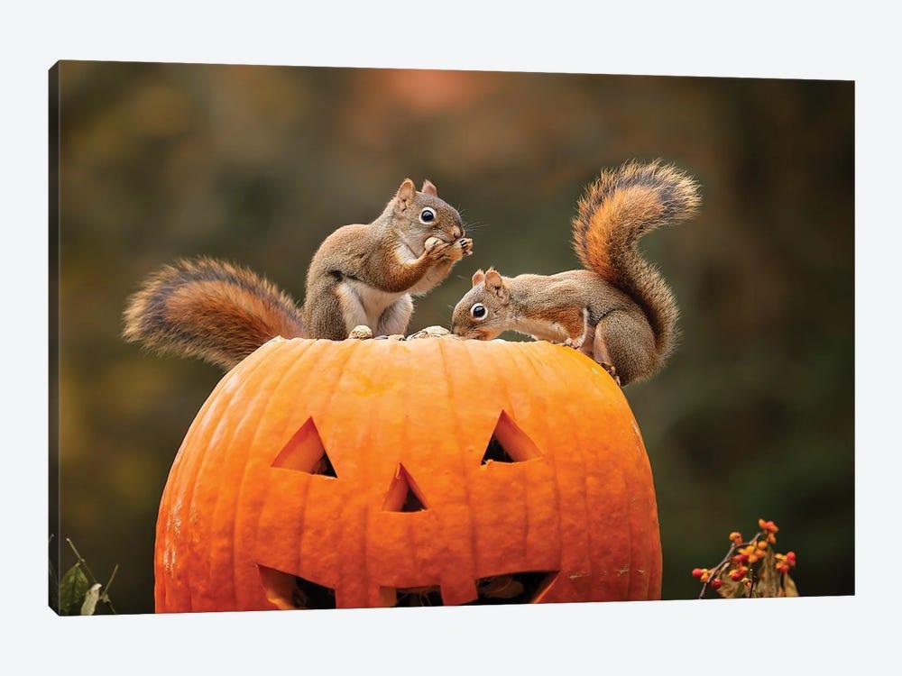 Red Squirrels And Pumpkin by Karen Burke 1-piece Canvas Wall Art
