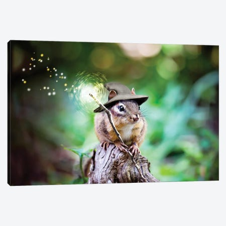 Sorcerer Chipmunk Canvas Print #KBU92} by Karen Burke Canvas Art Print