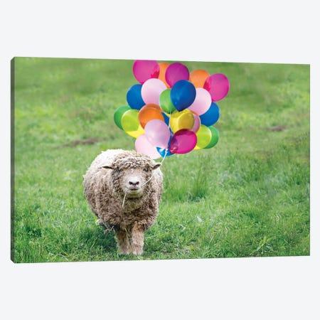 Babydoll Sheep Party Balloons Canvas Print #KBU99} by Karen Burke Art Print