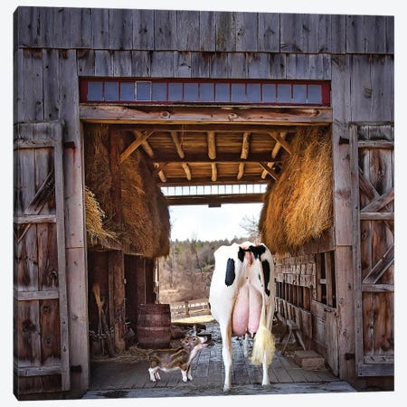 Barn Friends Canvas Print #KBU9} by Karen Burke Canvas Art