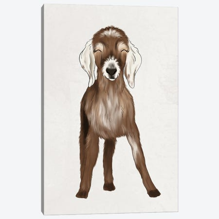 Baby Goat Canvas Print #KBY125} by Katie Bryant Canvas Print