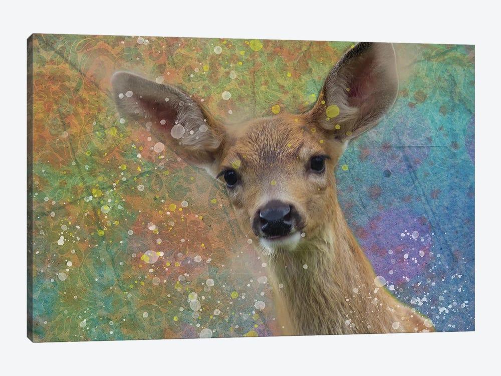 Splashy Fawn by Kevin Clifford 1-piece Canvas Art