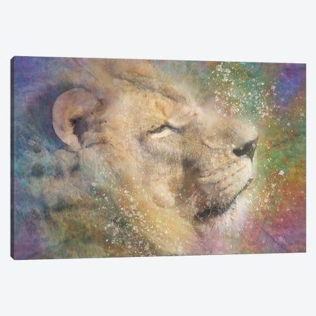 Zen Lion Canvas Print #KCF14} by Kevin Clifford Canvas Art