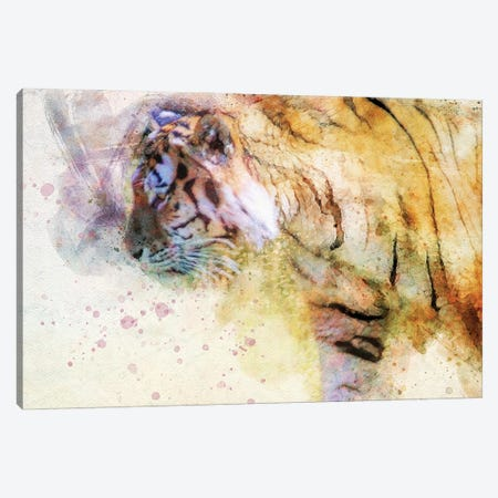 Prowling Tiger Canvas Print #KCF15} by Kevin Clifford Canvas Wall Art
