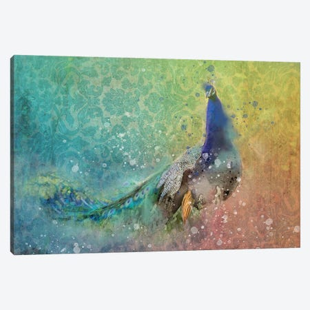 Splashy Peacock Canvas Print #KCF17} by Kevin Clifford Canvas Artwork