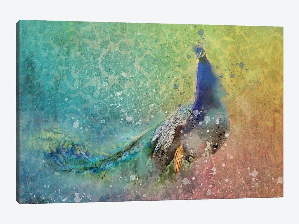 Splashy Peacock by Kevin Clifford 1-piece Canvas Artwork