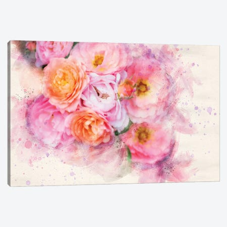 Splashy Pink Roses Canvas Print #KCF18} by Kevin Clifford Art Print