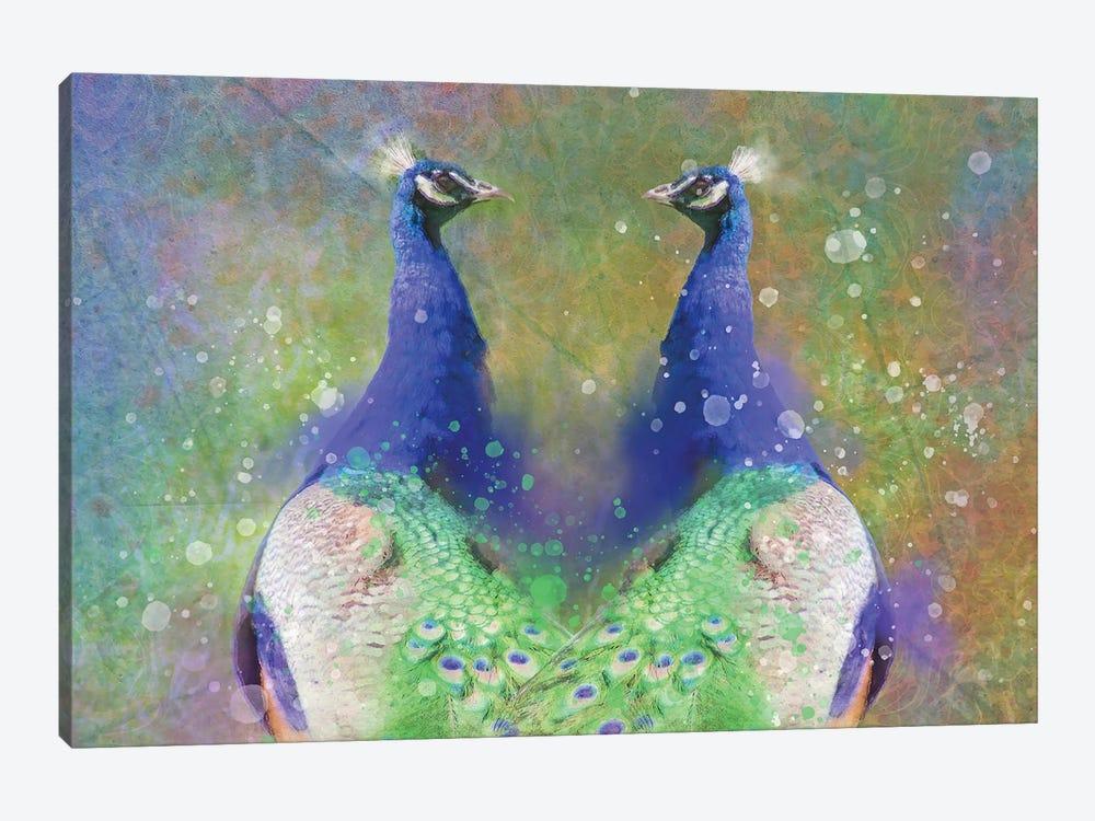 Twin Splashy Peacocks by Kevin Clifford 1-piece Canvas Print