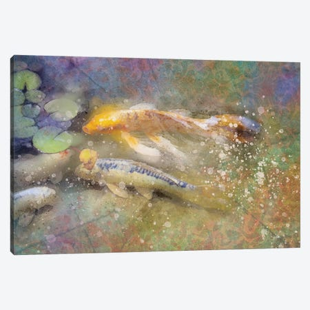 Splashy Koi Canvas Print #KCF23} by Kevin Clifford Canvas Artwork