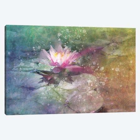 Splashy Lilly Pad Canvas Print #KCF27} by Kevin Clifford Canvas Art Print