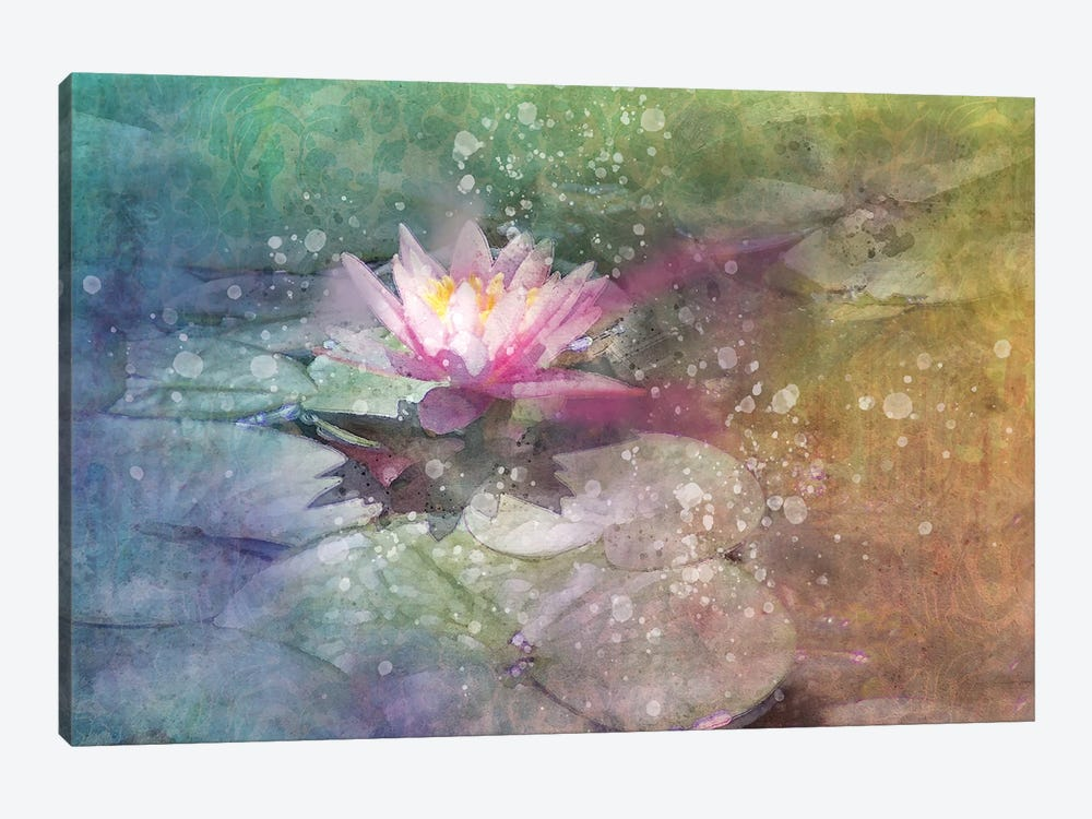Splashy Lilly Pad by Kevin Clifford 1-piece Art Print
