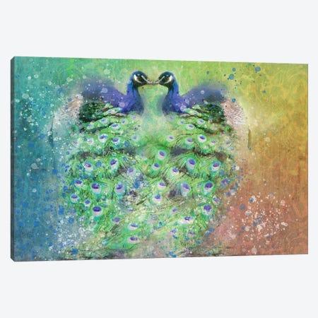 Splashy Peacocks Canvas Print #KCF2} by Kevin Clifford Canvas Print