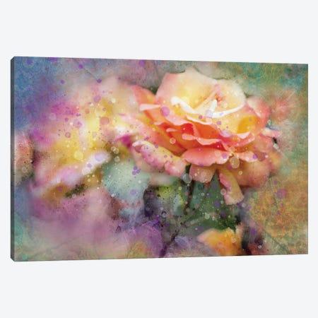 Splashy Yellow Roses2 Canvas Print #KCF32} by Kevin Clifford Art Print