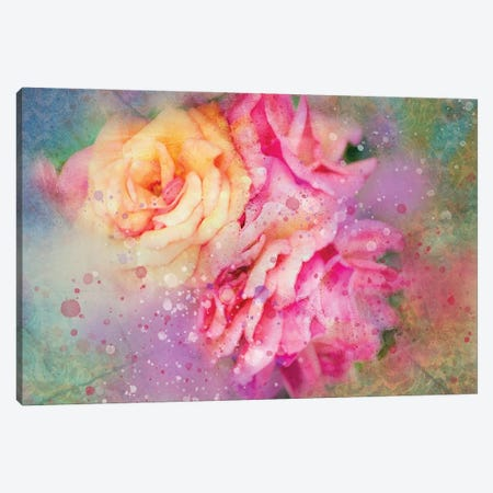 Splashy Colorful Roses Canvas Print #KCF35} by Kevin Clifford Canvas Wall Art