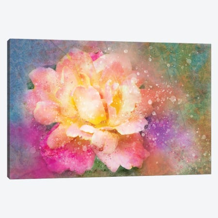 Splashy Colorful Rose Canvas Print #KCF36} by Kevin Clifford Canvas Wall Art