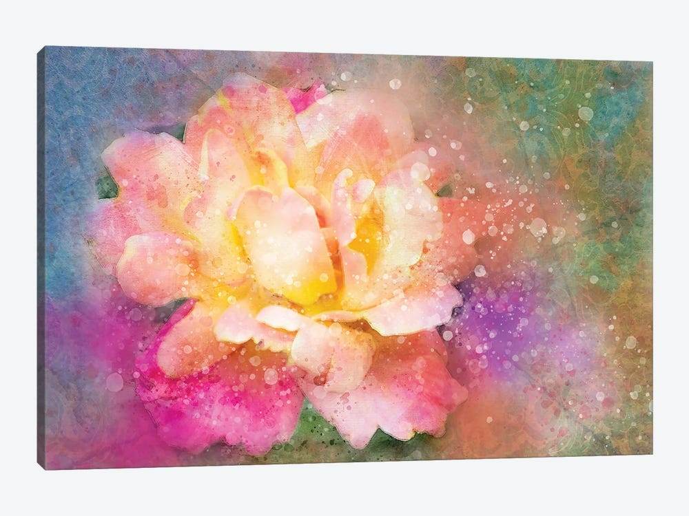 Splashy Colorful Rose by Kevin Clifford 1-piece Canvas Art Print