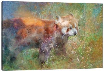 Splashy Red Panda Canvas Art Print