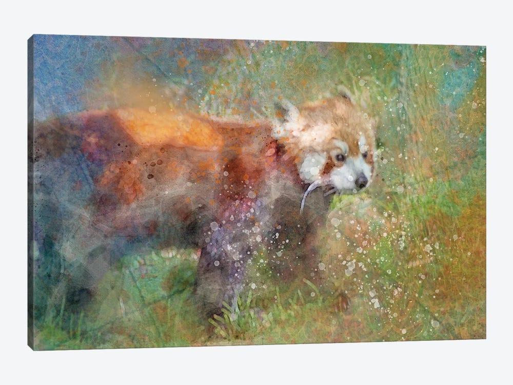Splashy Red Panda by Kevin Clifford 1-piece Art Print