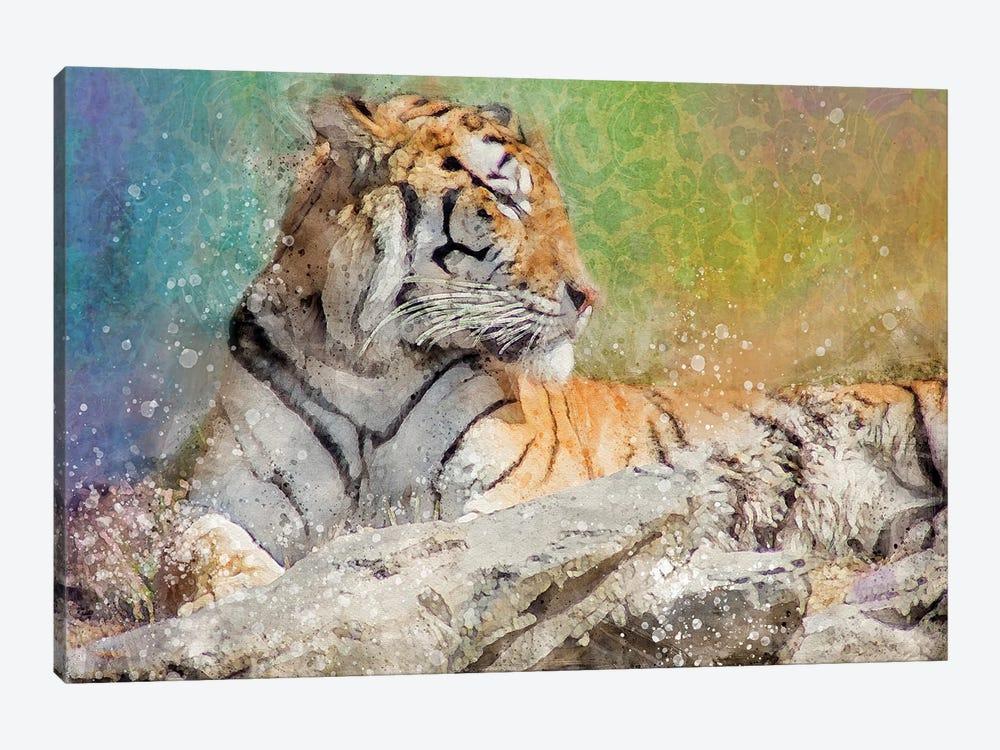 Splashy Tiger by Kevin Clifford 1-piece Canvas Artwork