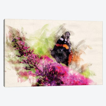 Butterfly II Canvas Print #KCF56} by Kevin Clifford Canvas Wall Art