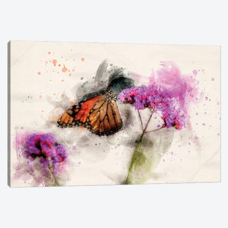Butterfly III Canvas Print #KCF57} by Kevin Clifford Canvas Artwork