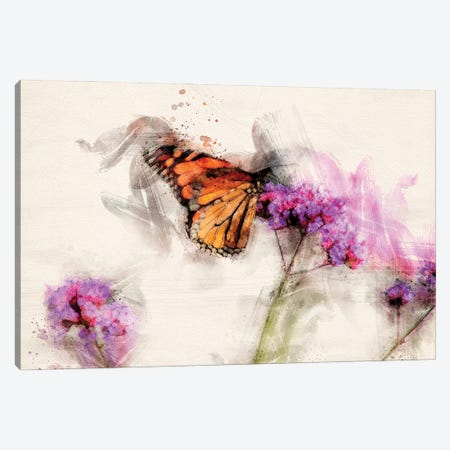 Butterfly IV Canvas Print #KCF58} by Kevin Clifford Canvas Print