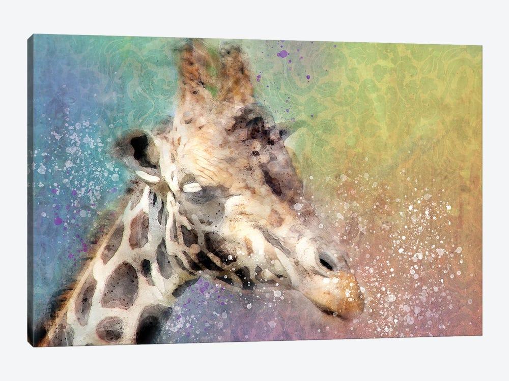 Giraffe by Kevin Clifford 1-piece Canvas Print