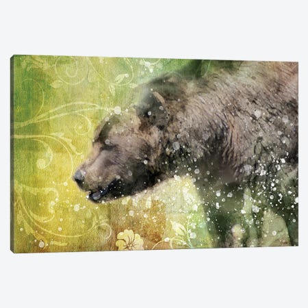 Splashy Bear Canvas Print #KCF63} by Kevin Clifford Canvas Wall Art
