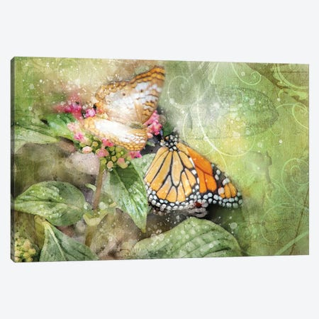 Butterflies Canvas Print #KCF66} by Kevin Clifford Canvas Art Print