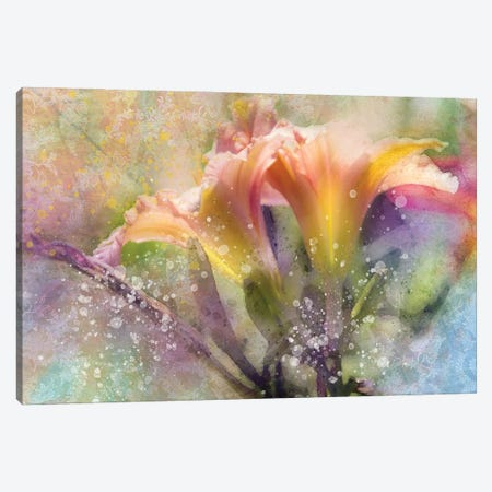 Floral I Canvas Print #KCF69} by Kevin Clifford Canvas Art