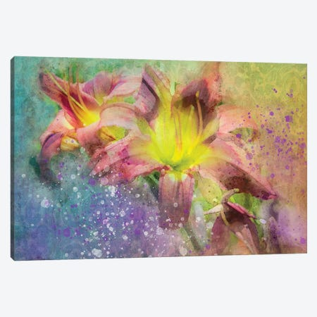 Floral II Canvas Print #KCF70} by Kevin Clifford Canvas Print