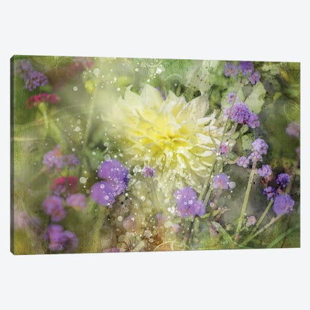Floral III Canvas Print #KCF71} by Kevin Clifford Art Print
