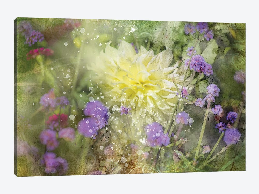 Floral III by Kevin Clifford 1-piece Canvas Wall Art