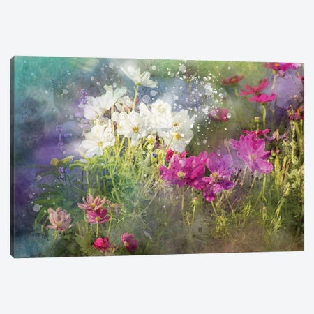 Floral VI Canvas Print #KCF74} by Kevin Clifford Canvas Wall Art