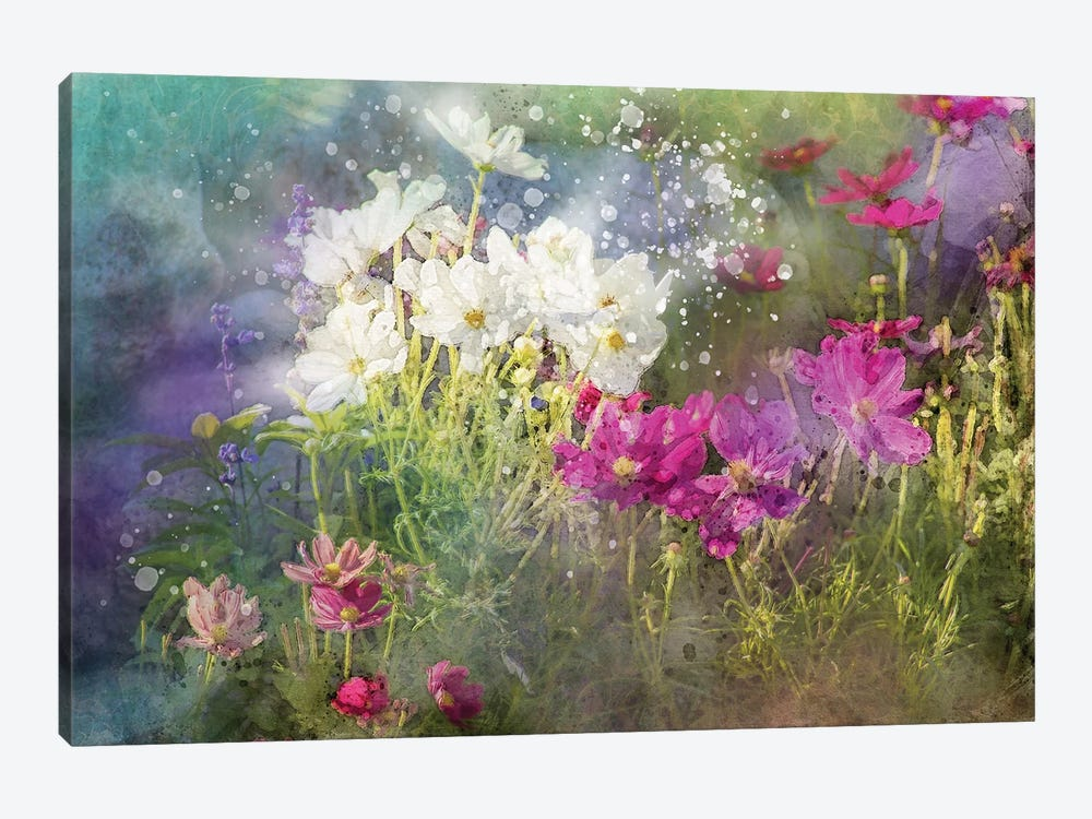 Floral VI by Kevin Clifford 1-piece Art Print