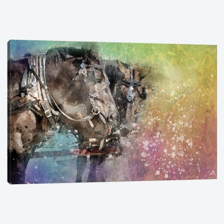 Horse Discussion Canvas Print #KCF78} by Kevin Clifford Art Print