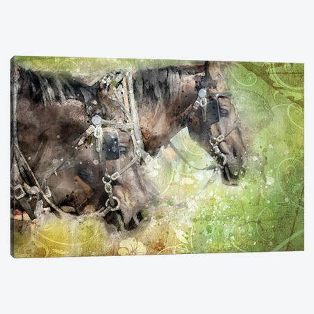 Horses Canvas Print #KCF80} by Kevin Clifford Canvas Wall Art