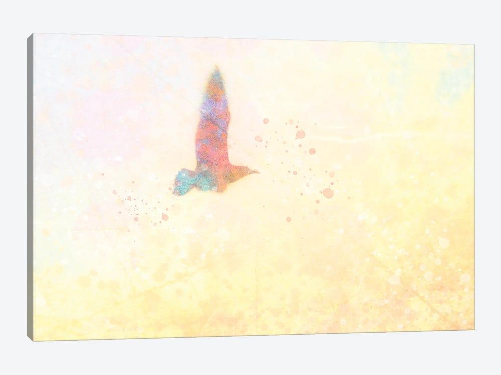 Mystic Gull by Kevin Clifford 1-piece Canvas Art